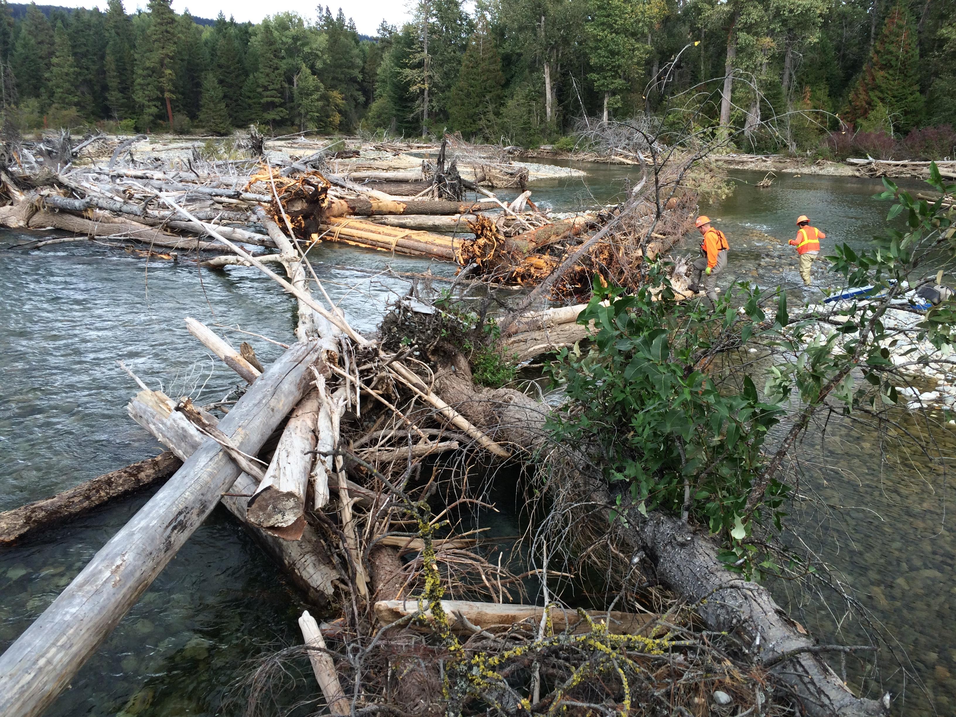 cle elum river large wood structures