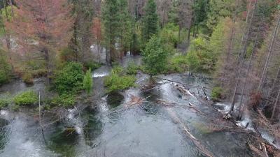 cle elum river floodplain
