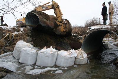 currier creek restoration